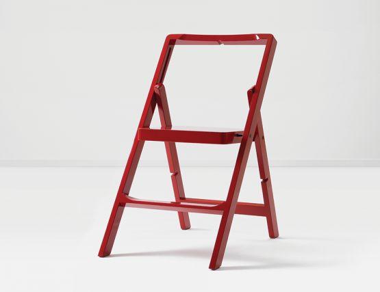 Red Mini Oneinpic